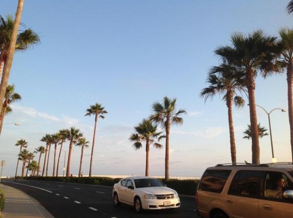 アメリカの西海岸の天候やのんびりした感じは個人的に大好きです